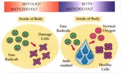antioxidant-water